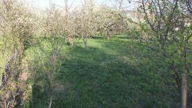 Prodej, zahrada, 1402 m2, Supíkovice