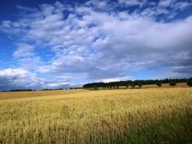 Prodej, pozemek, 850 m2, Darkovice
