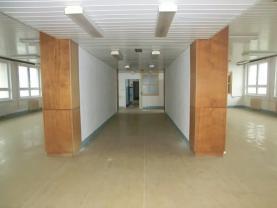 Pronájem, komernčí prostory, 571 m2, Brno - Lesná