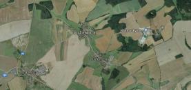 Prodej, les, 11937 m2, Luženice
