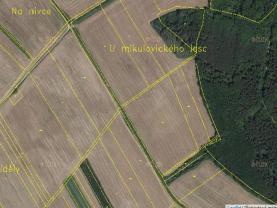 Prodej, pole, 8314,5 m2, Mikulovice