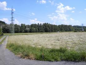 Prodej, pozemek, 1377 m2, Dětmarovice