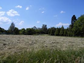 (Prodej, pozemek, 1377 m2, Dětmarovice), foto 4/4