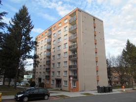 Prodej, byt 1+kk, 20 m2, Klatovy, ul. Pod Hůrkou