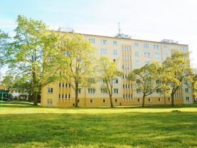 Prodej, byt 2+1, 56 m2, Ostrov, ul. Májová