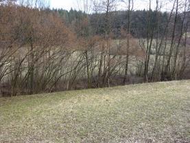 (Prodej, louka, 1252 m2, Ratiboř), foto 3/5