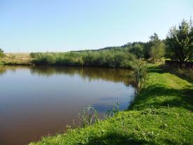 (Prodej, rybník, 2961 m2, Benešov, okres Blansko), foto 3/5
