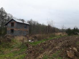 (Prodej, pozemek, 5030 m2, Horní Lutyně), foto 3/6