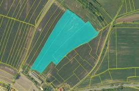 Prodej, podíl 1/4 pozemek 41281 m2 , Vysoké Mýto