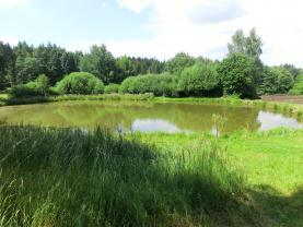 Prodej, rybník s pozemkem, CP 4886 m2, Vrbětín u Postupic