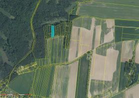 Prodej, les, 2228 m2, Soběkury