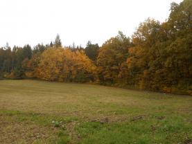 Prodej, les, 28505 m2, Soběšovice