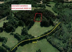 Prodej, lesní pozemek, 6114 m2, Jižní Čechy