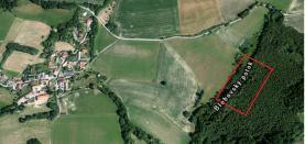Prodej, les, 4481 m2, Blehov