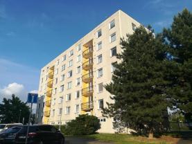 Prodej, byt 1+1, 35 m2, Pardubice, ul. Erno Košťála