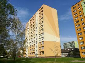 Prodej, byt 1+1, 29 m2, Ostrava - Poruba, ul. L. Podéště