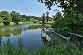 Prodej, rybníky, 34917 m2, Plzeň - Malesice