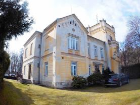 Prodej, zámek, 1180 m2, Střížovice