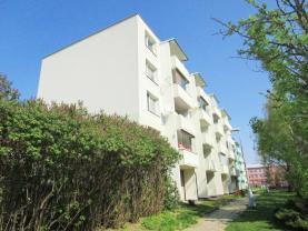 Prodej, byt 1+1, 34 m2, Hustopeče, ul. Školní
