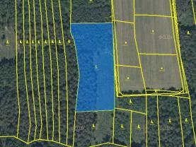 Prodej, lesní pozemek, 9931 m2, Hromnice