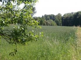 111Šenov2 (Prodej, pozemek,1800 m2, Šenov), foto 2/4