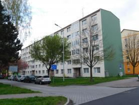 Prodej, byt 3+1, 65 m2, Horní Slavkov, ul. Dlouhá