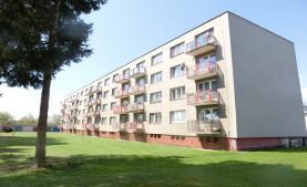 Pronájem, byt 2+1, Bakov nad Jizerou, ul. Školní