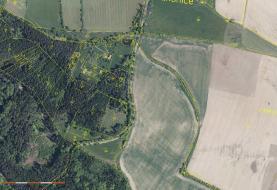 Prodej, lesní pozemek, 11849 m2, Drahonice