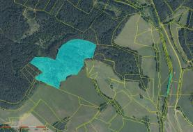 Prodej, lesní pozemek, 52523 m2, Dobršín