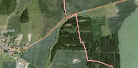 (Prodej, lesní pozemek, 7902 m2, Křenovice), foto 3/4