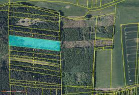 Prodej, lesní pozemek, 7902 m2, Křenovice