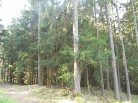 Prodej, lesní pozemek, 42650 m2, Volyně - Černětice