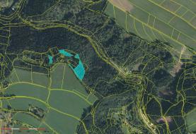 Prodej, lesní pozemek, 6119 m2, Semily