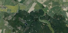 Prodej, les, 8414 m2, Vlastiboř, okr. Tábor