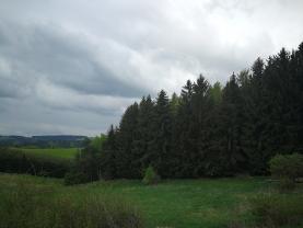 Prodej, les, 13530 m2, Rohozná u Poličky