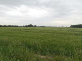 Prodej, orná půda, 31740 m2, Mladějovice