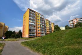 Prodej, byt 4+1, Praha, ul. Dolákova