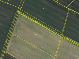 Prodej, pole, 2907 m2, Mikulovice