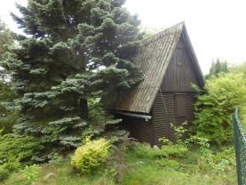 Prodej, chata, Kostelec nad Orlicí