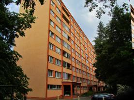 Prodej, byt 1+kk, 30 m2, Pardubice, ul. Ohrazenická