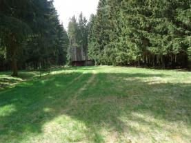 Prodej, pozemek, 4316 m2, Kameničky