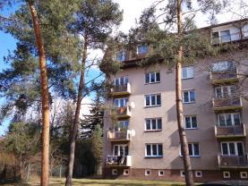 Pronájem, byt 3+kk, Hradec Králové