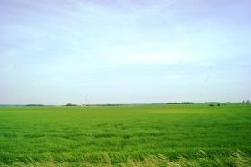 Prodej, orná půda, 133.309 m2, Hronětice