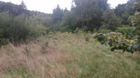 DSC_0170 (Prodej, stavební pozemek, 2901 m2, Petřvald u Karviné), foto 3/9