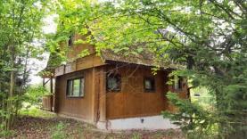 Prodej, chata, 799 m2, Holice - Podlesí