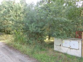 CIMG1366 (Prodej, stavební pozemek, 4956 m2, Kostelní Lhota), foto 3/11