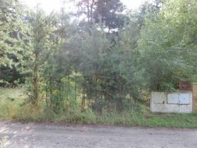CIMG1365 (Prodej, stavební pozemek, 4956 m2, Kostelní Lhota), foto 2/11