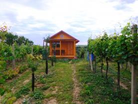 Prodej, vinice, 2586 m2, Mutěnice