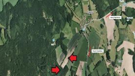 Prodej, les, 38.456 ha, Nový Rychnov