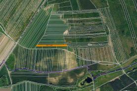 Prodej, orná půda, 2957 m2, Hlohovec
